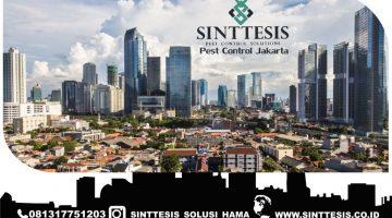 Pembasmi Rayap Alami di Jakarta