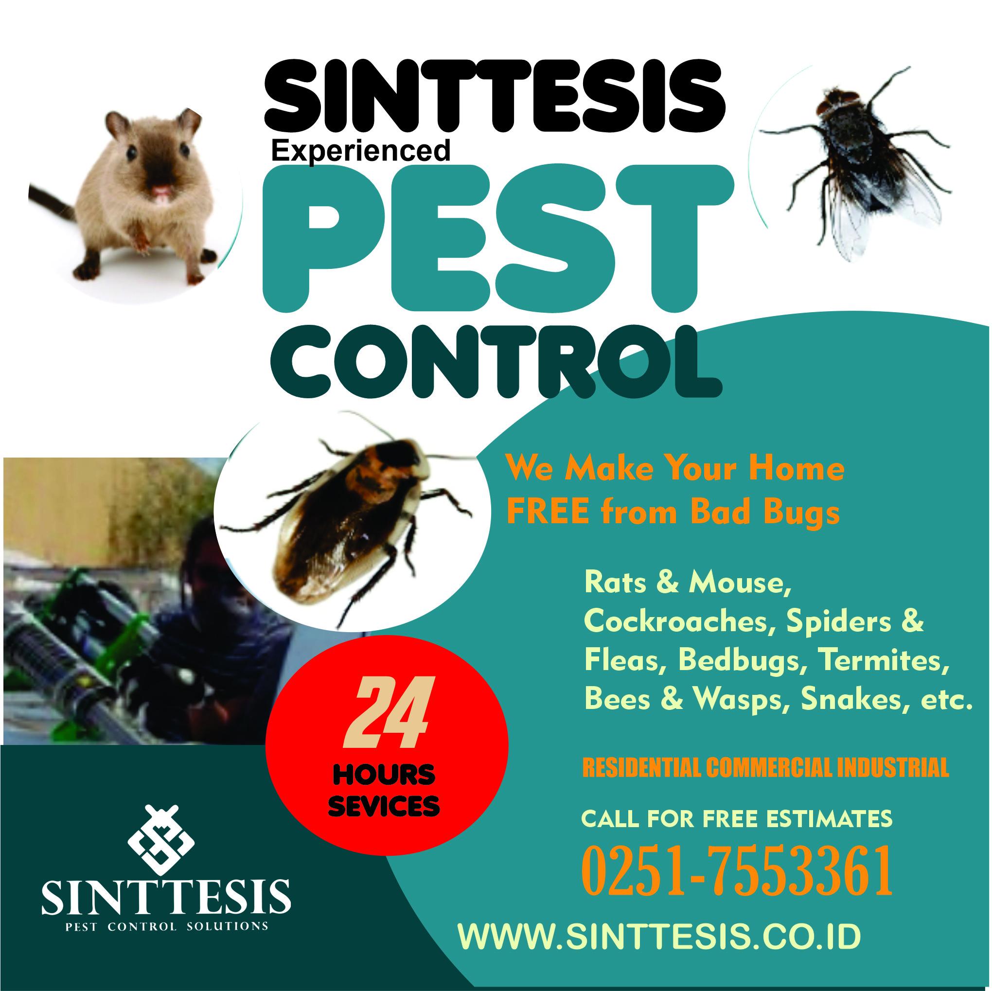 SINTTESIS PEST CONTROL