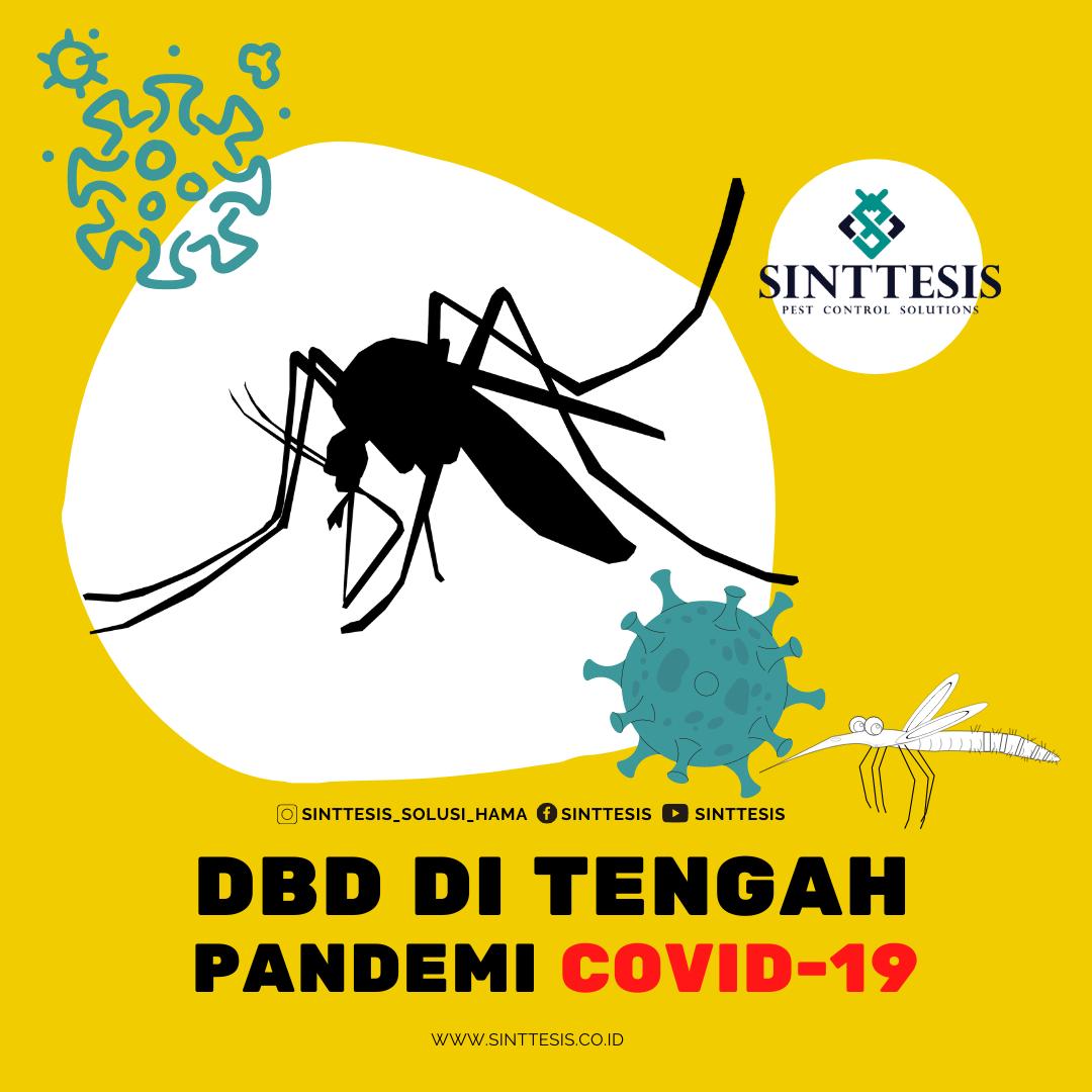DBD di Tengah Pandemi Covid-19