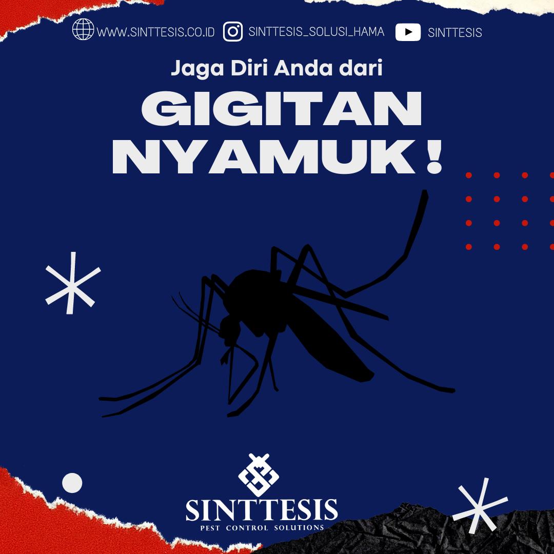 Waspada Gigitan Nyamuk