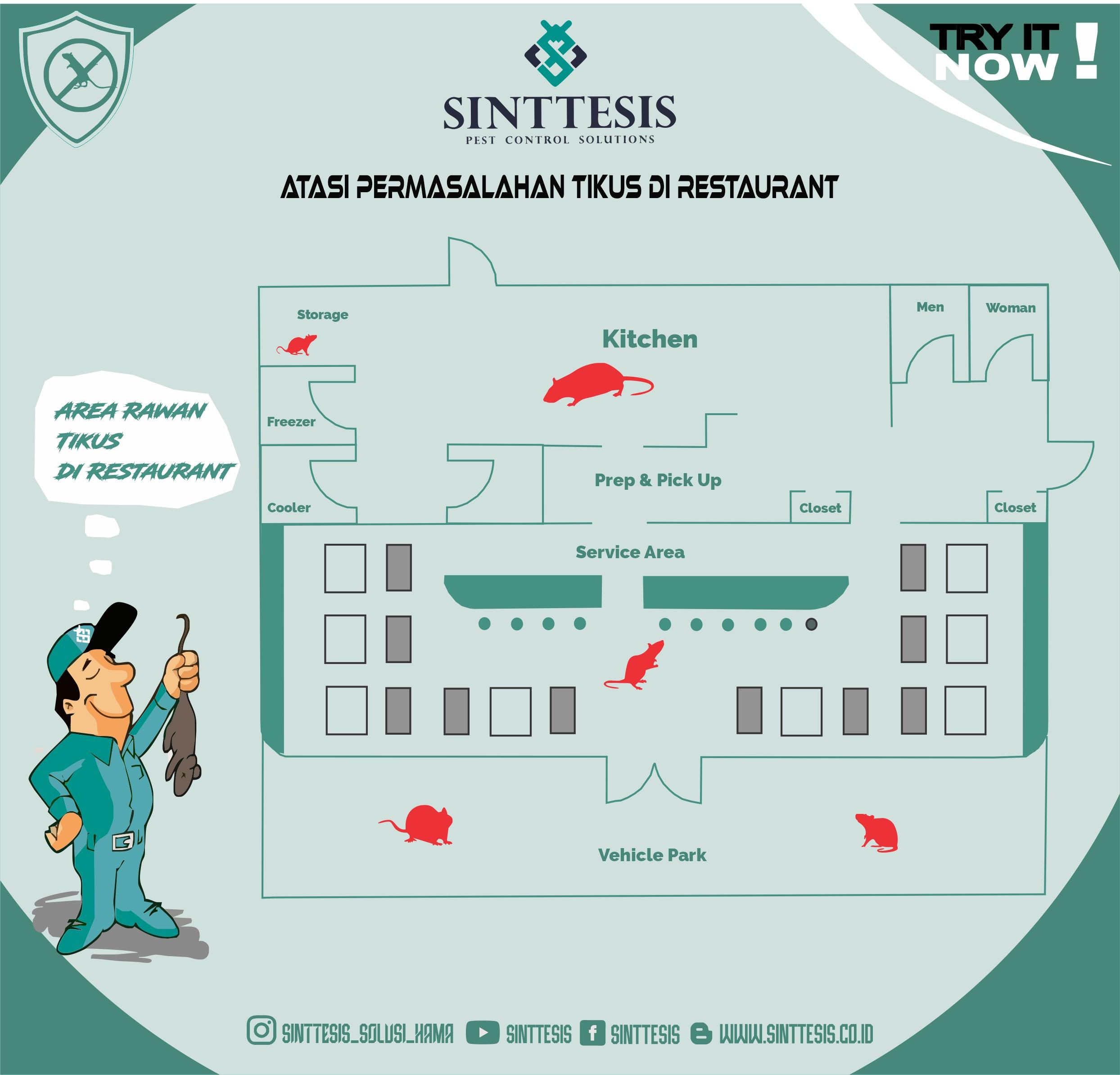 Permasalahan Tikus di Restaurant